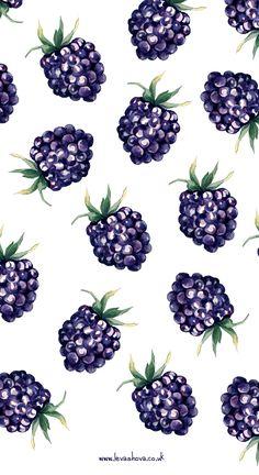 Watercolour illustration by Anastasiya Levashova. www.levashova.co.uk Blackberry #illustration #illustrator #watercolour #watercolor #fruit #freelanceillustrator #London #UK #Art