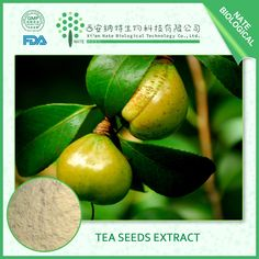 Tea seeds extract http://www.natesw.com/product/277394172