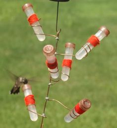 hand made hummingbird feeder...I saw one hummingbird in my life feeding on our lavender bush