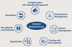 EmployWise is a Human Resource Management System that is quick to deploy, easy to use and very Affordable. Human Resource Management System, Organization Development, Life Cheats, Employee Handbook, Job Search Tips, Job Interview Questions, Resignation Letter, Team Building Activities, Group Work