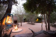 Best 5 Day Kruger National Park Safaris - Award Winning Luxury Packages are our most popular Luxury Safari Packages. Operated from our very popular luxury tented camp which is situated near to the Sabi Sand and Kruger Park Kruger National Park Safari, National Parks, Sand Game, Private Games, Luxury Tents, Luxury Packaging, Game Reserve, Tent Camping, Tours