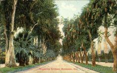 Scenic View of Magnolia Avenue, Riverside, CA