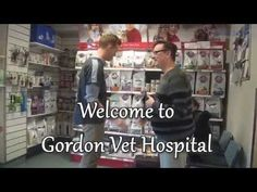 Are you searching for the best vet services for your pets? To get them free from the decease like ticks? Then you should visit Gordon vet because we have 40 years of experience in #Vet #services. Just one reason why we are the best tick treatment provider in the region.