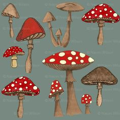 Mushrom Madness- Amanita Muscaria fabric - bella_modiste - Spoonflower