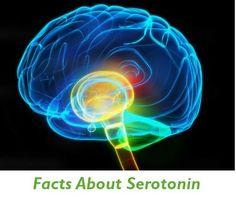 http://www.swisshealthmed.de  Facts about Serotonin
