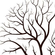 simple leafless trees with branches reflecting the autumn season . Displaying Family Pictures, Branch Drawing, Vector Trees, Simple Tree, Sunset Canvas, Tree Wall Art, Tree Designs, Autumn Trees, Autumn Home