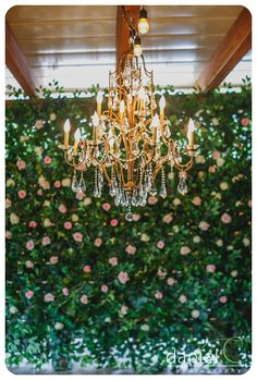 Texas Hill Country Wedding Venue  http://www.themamaison.com/