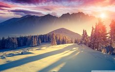 Free Winter Wallpaper Themes for Windows 10 - Bing images - Best of Wallpapers for Andriod and ios Winter Wallpaper Desktop, Wallpaper Windows 10, Widescreen Wallpaper, Photo Wallpaper, Nature Wallpaper, Hd Desktop, Latest Wallpaper, Wallpapers Android, Trendy Wallpaper