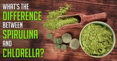 Spirulina is a blue-green freshwater algae that is rich in protein and can help boost your immune system and regulate cholesterol and blood pressure levels.