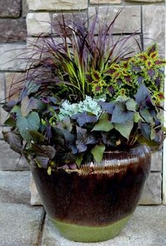 sweet potato vines, coleus, fountain grass and dusty miller
