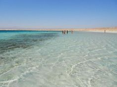 sharm el luli Egypte  (47946220)