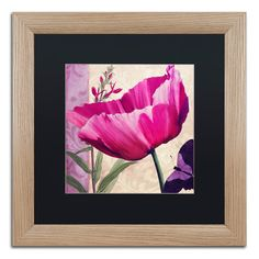 "Trademark Art 'Matted Framed Art' Framed Painting Print Mat Color: Black, Size: 16"" H x 16"" W x 0.5"" D"