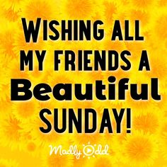 Blessed Sunday Morning, Blessed Sunday Quotes, Sunday Morning Quotes, Sunday Wishes, Sunday Quotes Funny, Good Morning Funny, Good Morning Texts, Morning Greetings Quotes, Good Morning Friends