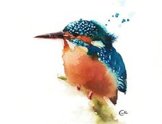Watercolor Kingfisher Bird - Print 8 x 8 inches