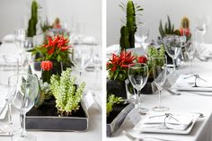 Red and green pop of color cacti/succulent centerpieces against all white