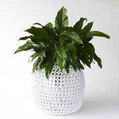 White Planter / Stool #lisaellisgardens #gardengifts #planter #designergardengifts #onlineandinstore #lovegardening  https://lisaellisgardens.com.au/shop/