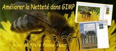 [Tuto GIMP] Le Filtre Passe-Haut et la Netteté - BonPlanPhoto Tuto Gimp, Photo Editing, Animals, Tutorial, Internet, Photo Retouching, Fotografia, Photography Tricks, Filter