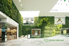 Green Fortune Plantwall / vertical garden in retail location (shopping mall) - at Caroli Center, Malmö, Sweden
