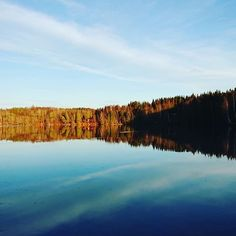 A walk with the doggo &  @vennefjes   #lookatthemviews #lifessimplepleasures #natureisamazing #utpåturvestfold #grorudvannet #gøypålandet Life S, Simple Pleasures, Adventure, Mountains, Nature, Travel, Naturaleza, Viajes, Destinations