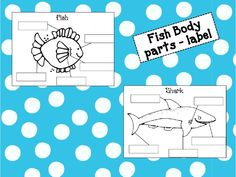 fish diagrams and labels