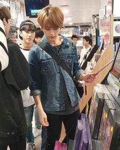 stray kids lee know Lee Minho Stray Kids, Lee Know Stray Kids, Kim Woo Jin, Idole, Lee Min Ho, Kpop Boy, Boyfriend Material, South Korean Boy Band, Mixtape