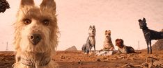 Set in a near-future Japan, Wes Anderson's Isle of Dogs follows a boy's odyssey in search of his lost dog.