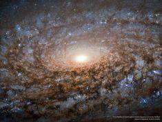 This new image of the spiral galaxy NGC 3521 from the NASA/ESA Hubble Space Telescope is not out of focus. Instead, the galaxy itself has a soft, woolly appearance as it a member of a class of galaxies known as flocculent spirals. Hubble Pictures, Astronomy Pictures, Hubble Images, Galaxy Images, Cosmos, Hubble Space Telescope, Space And Astronomy, Telescope Images, Astronomy Stars