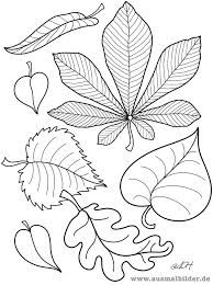Images for coloring autumn - Coloring Pages Autumn Crafts, Autumn Art, Thanksgiving Crafts, Leaf Template, Owl Templates, Crown Template, Applique Templates, Flower Template, Arte Floral