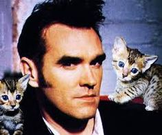 morrissey cats sideburns