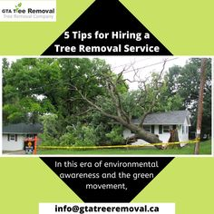 cutting down trees would seem like the most unlikely thing to do right? Well, truth be told, sometimes it is the only option. Call at now. Tree Removal Service, Removal Services, Gta, Things To Do, Environment, How To Remove, Trees, Wellness, Things To Make