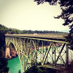 Visit the bald eagles and sea lions at the Deception Pass Bridge in Oak Harbor, WA