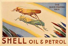 1933 Shell Oil Gas Grasshoppers Hooper Rowe Mini Poster Original | eBay
