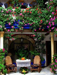 Patio and balcony in Barcelona, from FB Old Moss Woman's Secret Garden