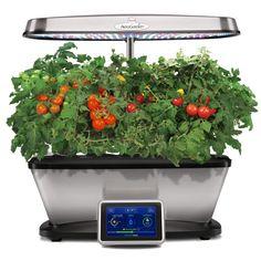 Aerogarden Harvest Hydroponic System With Gourmet Herbs 400 x 300