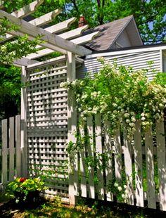 Add height with a garden trellis