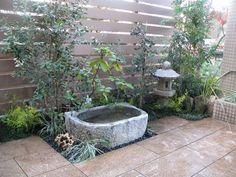 アンティーク水鉢でメダカを飼う Japanese Bath House, Aquatic Plants, Container Gardening, Bonsai, Succulents, Gallery, Wood, Design, Garden
