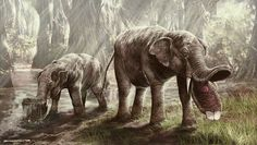 Absurd Creature of the Week: This Prehistoric Elephant Had a Huge Spork for a Mouth