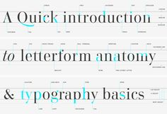 A quick introduction to letterform anatomy & typography basics