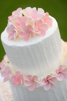 Plumeria flowers on cake :) <3