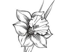 Narcissus Flower Tattoo Ideas For 2020 Narcissus Flower Tattoos, Daffodil Tattoo, Birth Flower Tattoos, Wildflowers Tattoo, Flor Tattoo, Flower Drawing Images, Flower Drawings, Candle Tattoo, Watercolor Flower