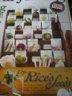 Great picture of seed display box from Country Living's Apr 2013 cover - would like to copy it