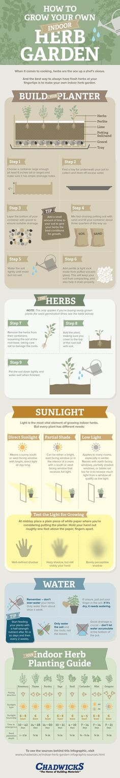 Unique Infographic Design, How to Grow Your Own Indoor Herb Garden #Infographic #Design
