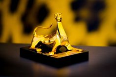 The Pardo d'oro Festival del film Locarno @filmfestlocarno