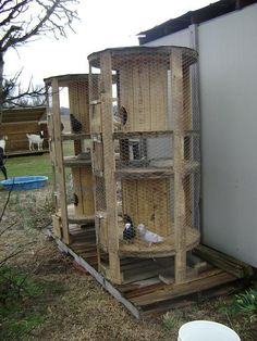 Chicken coop from pallets and utility wire spools.