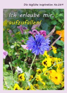 Die tägliche Inspiration No.289  www.inspirationenblog.wordpress.com  www.ulrikebischof.de