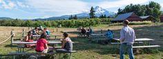 Oregon's Destination-Worthy Breweries - Travel Oregon
