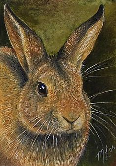 Golden Bunny Rabbit Art by  Melody Lea Lamb ACEO Print. $6.25, via Etsy.