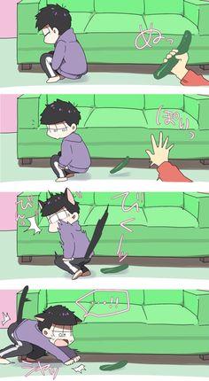 Ichimatsu//cat