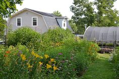 Center for Historic Plants gardens, barn, and greenhouse