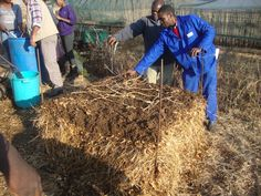 Jabulani Foundations For Farming Training - Morester Child and Youth Care Centre, KZN (South Africa) Home Grown Vegetables, Food For Thought, Farming, South Africa, The Help, Centre, Healthy Living, Foundation, Youth